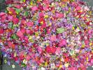 um den Blumenteppich der Kinder zu fotografieren